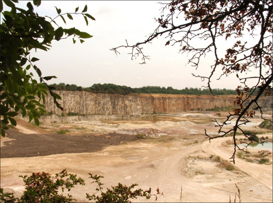 Figure 1: View over Holme Hall Limestone Quarry near Stainton