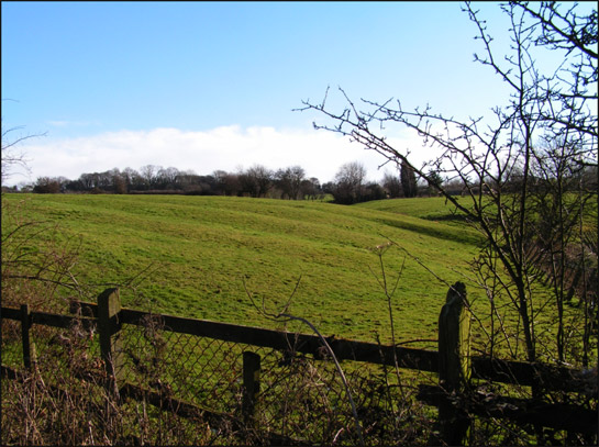 Figure 1: Ridge and Furrow earthworks immediately to the east of the village of Carr in the 'Carr Strip Enclosures' character area.  Preservation of ridge and furrow earthworks depends on the conversion and continued management of the land on which they survive as grasslands