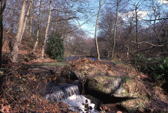 Remains of Frank Wheel in the Rivelin valley